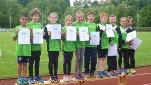Die beiden Waldseer U12-Teams erreichten den ersten und den sechsten Platz.